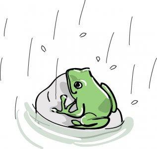 雨漏りについて